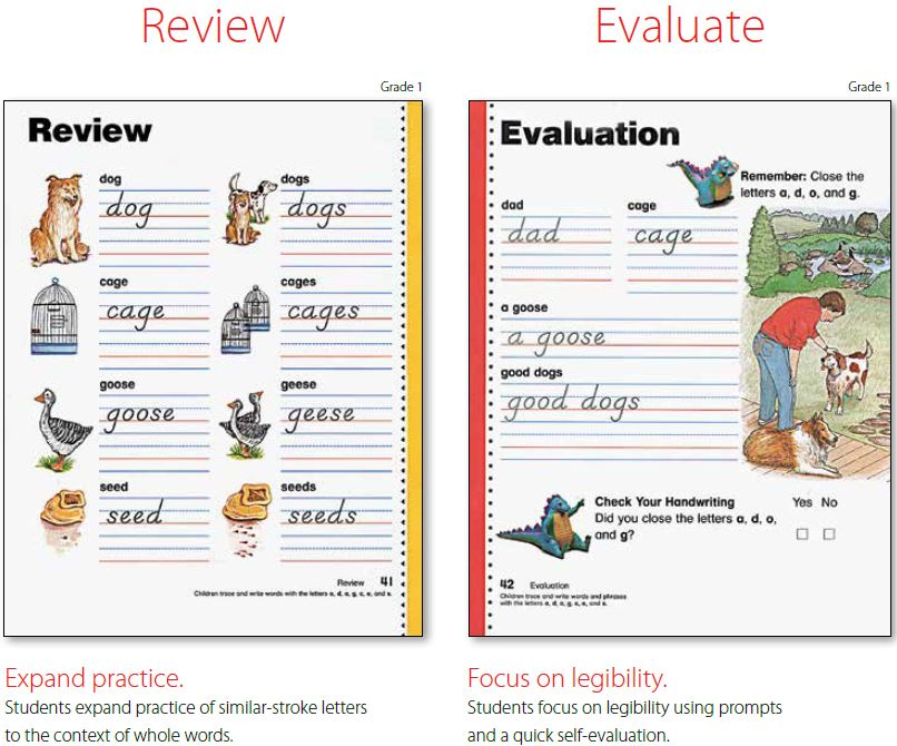 review-evaluate-image.jpg